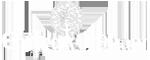 Chitrakut-logo_site